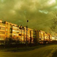 Проектна 7, Макаров