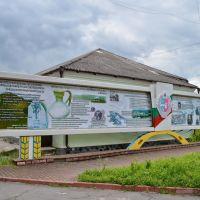 Рокитне. Історичний стенд / Rokitnoe. Historical stand, Ракитное
