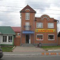 Магазин, Ракитное