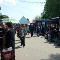 Market of Skvyra 2, Сквира