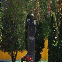 Ольшевский, Сквира