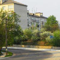 Весна 2009, Тараща