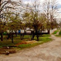 23.04.2012 17:23  Дорога Р04. Скверы на Белоцерковской улице города Тараща., Тараща