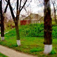 23.04.2012 17:24  Дорога Р04. Тротуары на Белоцерковской улице., Тараща