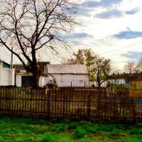 23.04.2012 17:28  Дорога Р04. Улица Розы Люксембург. Дома частной постройки., Тараща