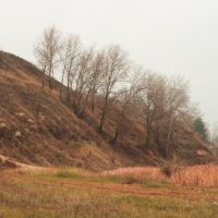 Вышгородские холмы, Вышгород