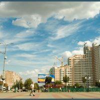 Ольжин Град, Вышгород