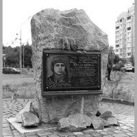 Никифор Микитович, Вышгород