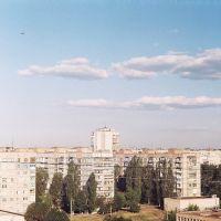 Alexandriya summer 2012, Александрия