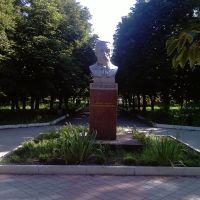 Бобринец, Памятник Кропивницькому Марко Лукичу, Бобринец