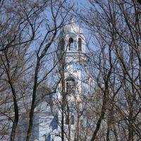 Вознесенский собор в г. Бобринец, Бобринец