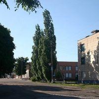 Центр, Бобринец