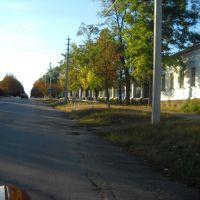 ул. Ленина, Бобринец