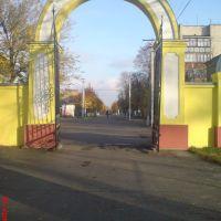 ул. Воровского с стадиона, Гайворон