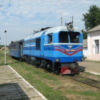 ►Узкоколейный поезд на ст. Голованевск, Голованевск