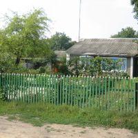 The house of the grandmother, Добровеличковка