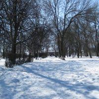 Парк в Долинской, Долинская