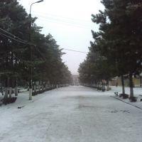 вул. Ленина, Долинская