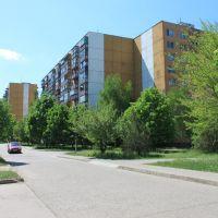 """Колись """"на районі"""" було не так зелено..., Долинская"""