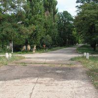 Перекрёсток, Елизаветградка