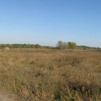 Беляевка(2), Елизаветградка