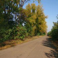 Осень, Елизаветградка