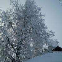 Крещенские морозы, Знаменка-Вторая