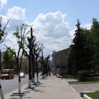 Велика Перспективна, біля наукової бібліотеки / near a scientific library, Кировоград