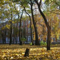 Центральна Україна || Кіровоград || Ковалівський парк і казарми, Кировоград