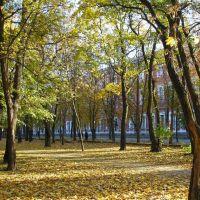 Центральна Україна || Кіровоград || Ковалівський парк, Кировоград