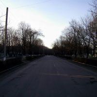 Головна вулиця міста (Біля будинку Саніча), Малая Виска