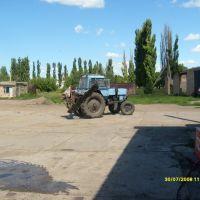 Трактор(Територія РайАвтоДор), Малая Виска