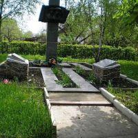 Памятник воинам, Малая Виска