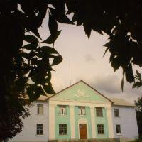 Районний будинок культури, Новгородка