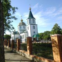 Свято-Троїцька церква Новгородки, Новгородка