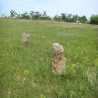 старе кладовище, на якому росте ковила, Новгородка