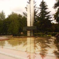 Меморіал, Новгородка