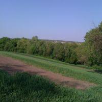 низи, Новоархангельск