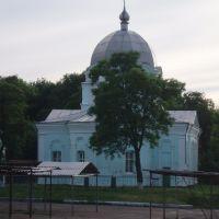 Церковь в Златополе, Новомиргород