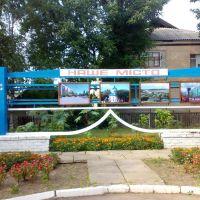 Міська рада, Новомиргород