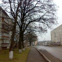 Вулиця Карла Маркса, Новомиргород