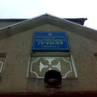 Златопільська гімназія, Новомиргород