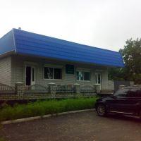 Кафе-бар на Софіївці, Новомиргород