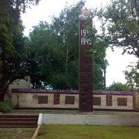 Меморіал на Софіївці, Новомиргород