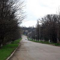 Вулиця Центральна, Новомиргород