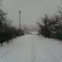 Зима 2009, Новоукраинка