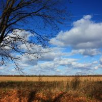 По дороге с облаками... Как я ехала в Умань. Line to Uman., Ольшанка