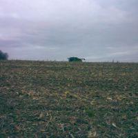Уборка кукурузы, Онуфриевка