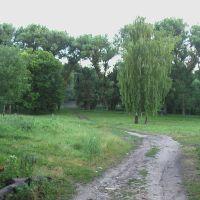 Дорога до острова, Онуфриевка