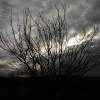 Светловодск. Такая зима. 2012-01-02, Светловодск